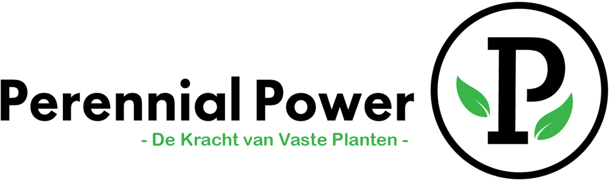 Perennial Power Logo
